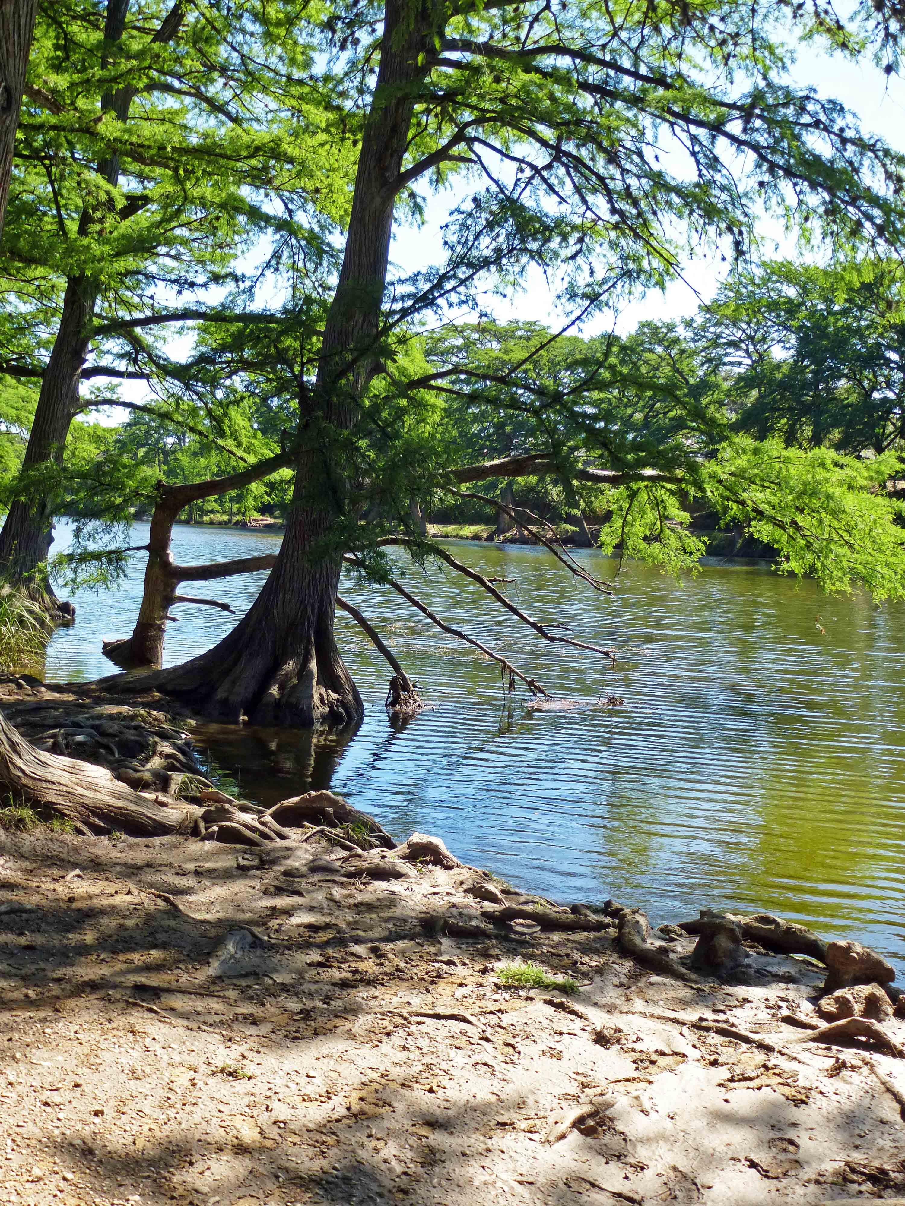 kickin frioman lodging property project back river frio details vacation cabins rent for